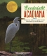 Cover of Goodnight Acadiana